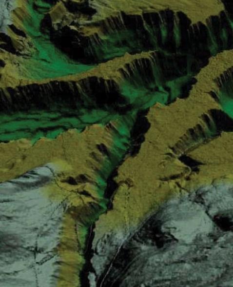Cartography & GIS